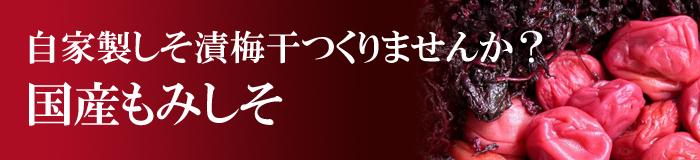 もみしそ 赤紫蘇