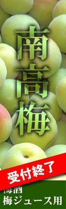 青梅(梅ジュース用南高梅)